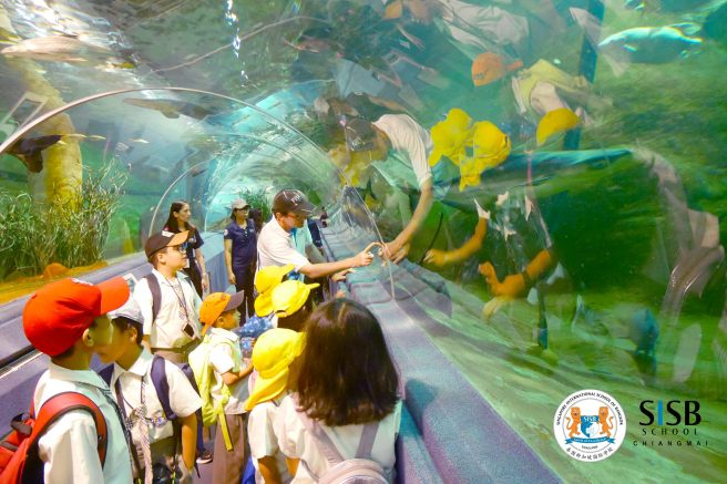 students from Singapore International school in Chiang Mai visit the zoo